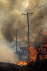 Fire, Virgin Islands, Hawaii - 00241MR