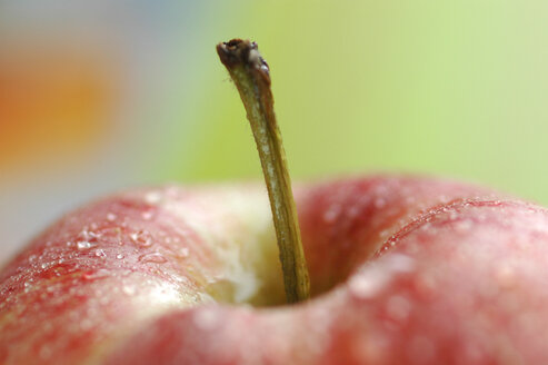Extreme close up of apple - AS01141