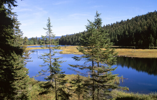 Kleiner Arbersee, Bavarian Forest, Germany - HSF00936