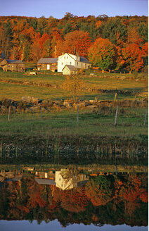 USA; Vermont; Farm near Weston - HS00875