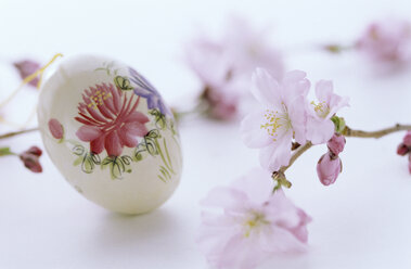 Floral painting on egg, Easter tradition, close-up - 00645AS