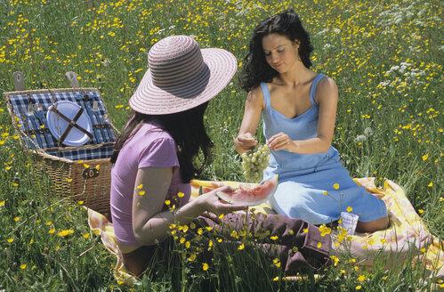 Two young women having picnic - LDF00082