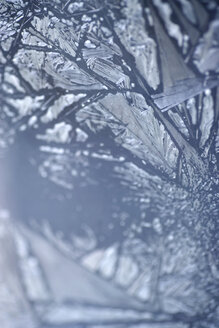 Elements, ice crystals, extreme close-up - MNF00063