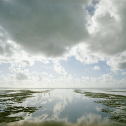Africa, Tanzania, Cloudy sky reflected on sea at low tide - PM00343