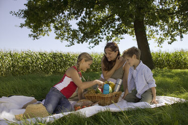 Mother with daughter and son at picnic - CKF00125