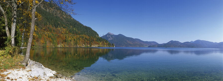 Walchensee, Oberbayern, See im Herbst - MRF00539