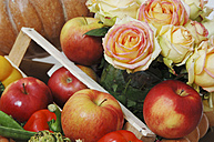Vegetables apples and roses - 00017LRH-U