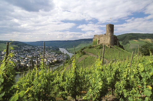 Old castle and vinyards at Moselle, Germany - CHK00072