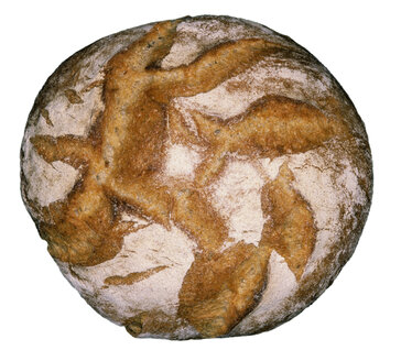 Loaf of bread, close-up - THF00263