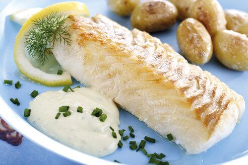 Codfish and remolade with roast potatoes, close-up - 04004CS-U