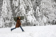 Young woman carrying Christmas tree on shoulders in snow, smiling - HHF00462