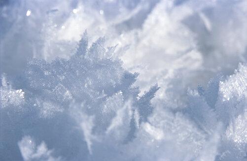 Snowflakes, close-up - NHF00146