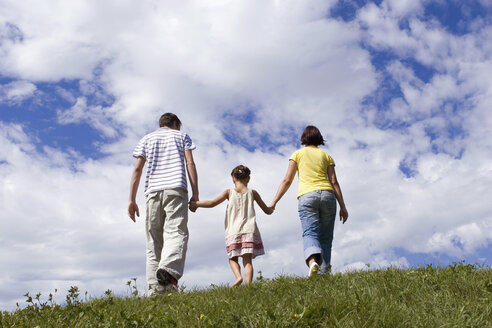 Parents with daughter, hand in hand, rear view - LDF00324