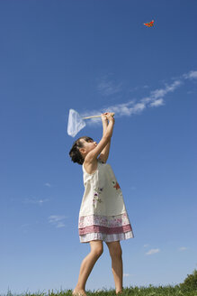 Girl (7-9) holding net, trying to catch butterfly - LDF00303