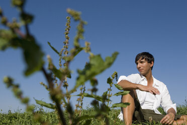 Young man sitting in meadow - LDF00225
