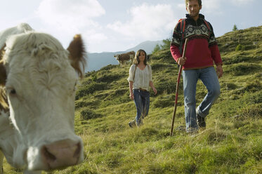 Young couple in moutains, cow in foreground - BABF00202
