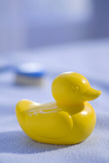 Yellow rubber duck - SMOF00061