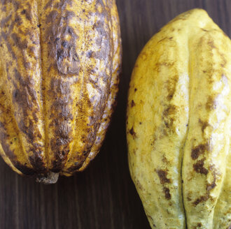 Two Cocoa husks - COF00072