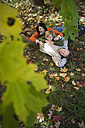 Parents with son (8-11) lying in meadow, elevated view - WESTF03102