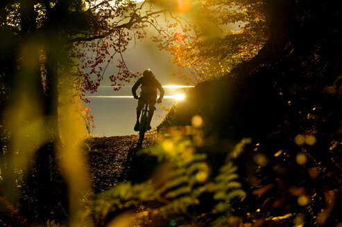 Young man mountain biking in forest - MRF00805