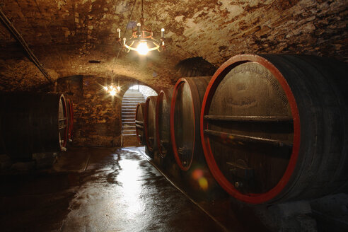 Wine casks in cellar - WESTF03760
