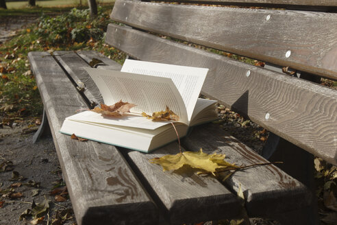 Book on bench - LDF00410