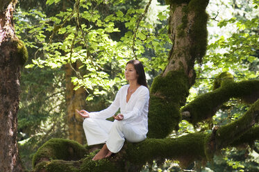 Young woman meditating on tree branch, side view - HHF01151