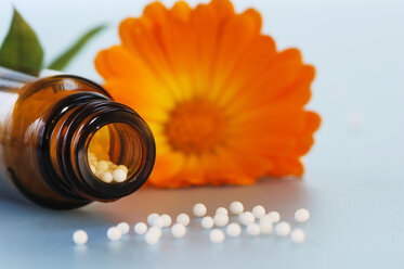 Medicinal flask with pills in front of calendula - CRF01153