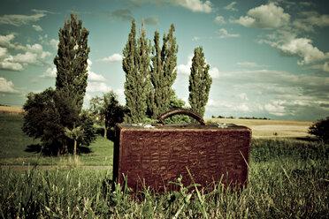 Suitcase in landscape - DW00003