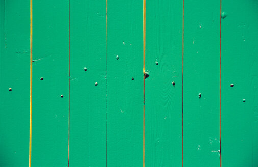 Limber wall in green - PMF00429