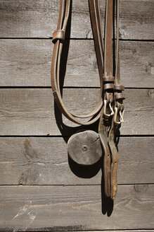 Bridle on house wall - PM00491