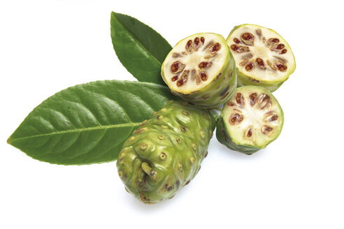 Noni fruits (Morinda Citrifolia) - 06116CS-U