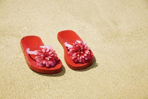 Flip flops on beach - LDF00491