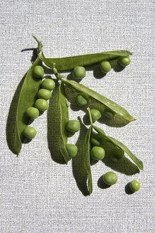 Snow peas in pod, close-up - TL00132