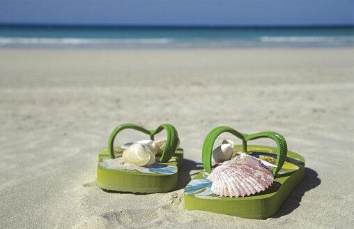 VAE, Dubai, Jumeirah Beach, shells in bathing shoes - LF00113