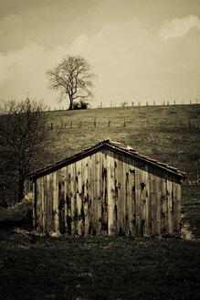 Germany, Neulingen, Wooden hut - DW00128