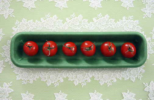Tomatoes in row, close-up - TL00248