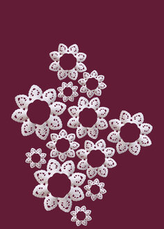 Paper Laces, close-up - TLF00239