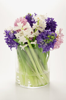 Bunch of hyacinths in flower vase, (Hyacinthus) - MNF00140