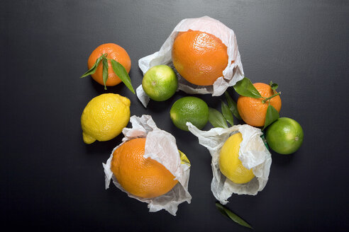 Citrus fruits, elevated view - MNF00125
