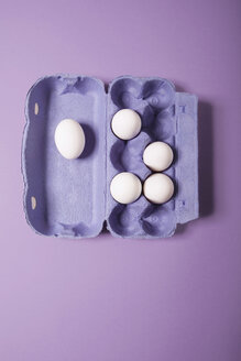 Eggs in box, elevated view - MNF00113