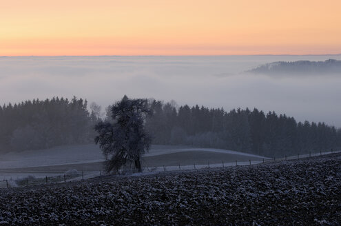 Germany, Baden-Württemberg, Deggenhausertal with afterglow and fog - SMF00304