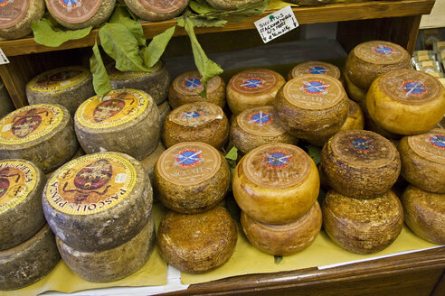 Italy, Tuscany, Various cheeses in cheese shop - FOF00541