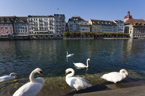 Switzerland, Lucerne, Citiscape - WD00051