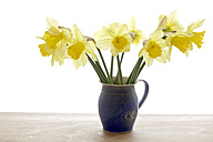 Vase with daffodils, (Narcissus pseudonarcissus), close up - TCF00722