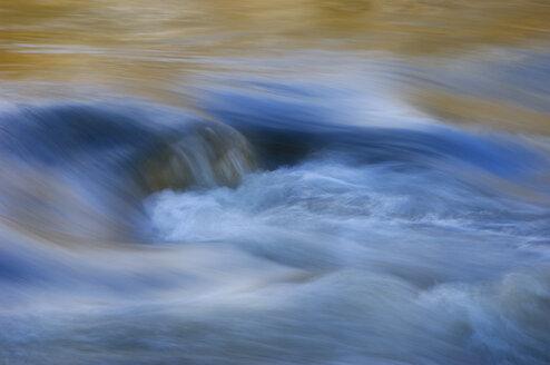 Germany, Langenargen, Argen River - SMF00322