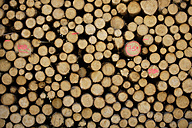 Germany, Bavaria, Upper Bavaria, Stack of sawn timber, full frame - TCF00798