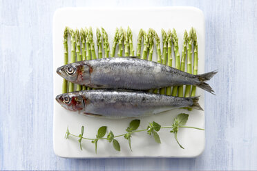 Sardines on platter with asparagus and herbs, elevated view - KSWF00148