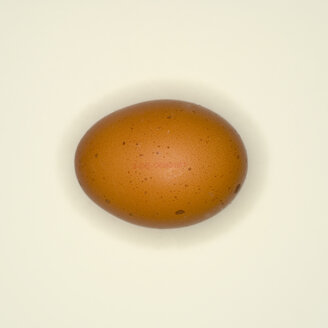 Egg, elevated view - MUF00517