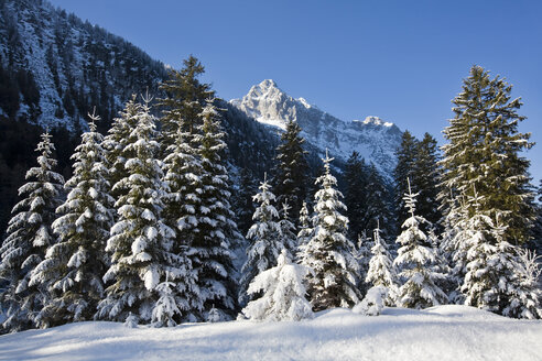 Germany, Bavaria, Winter scenery in the background Wetterstein mountains - FOF00786